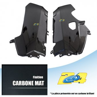 Bmw S 1000 RR 2009-2011 Cache Catalyseur Carbone Mat